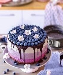 Entdecken Sie mehr sommerliche Obstkuchen-Rezepte!