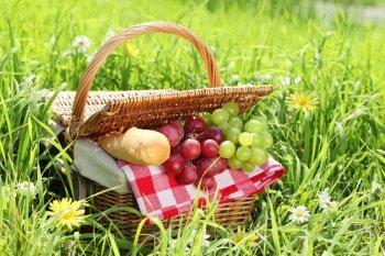 Das Picknick - Genuss im Grünen