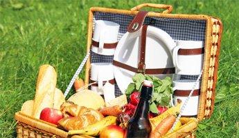 Alles für das perfekte Picknickvergnügen