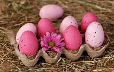 Was Ostern aus dem Kochtopf hüpft